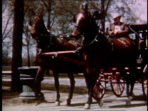 1951 TS horse-drawn carriage driving by on road / Detroit, Michigan, United States