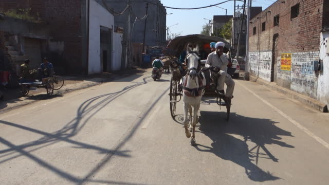 horse-drawn carriage of tourists through streets of amritsar - horse cart stock videos and b-roll footage