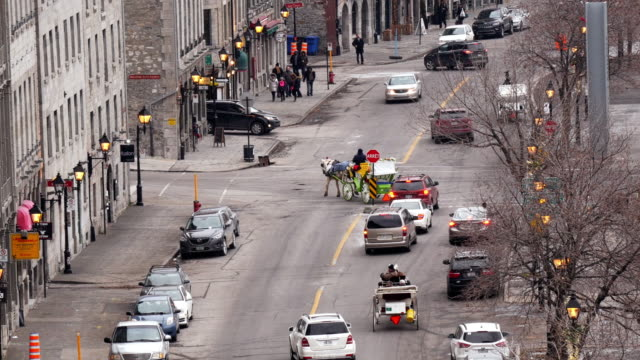 horse-drawn carriage on rue de la commune in old montreal from above – wide shot - vieux montréal stock-videos und b-roll-filmmaterial