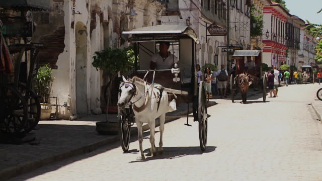Horse-drawn Carriage on the Street, Vigan, Philippines