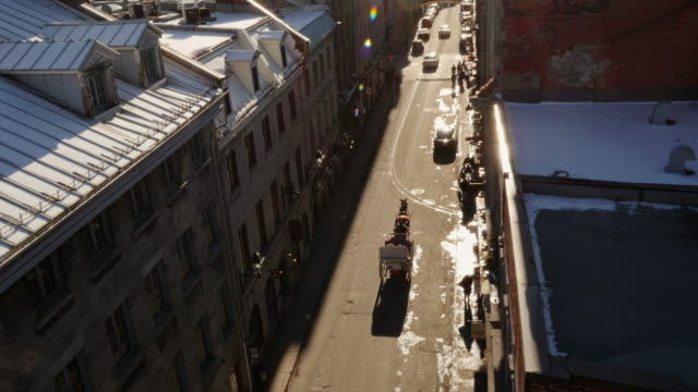 horse-drawn carriage passing through street in old montreal from above - with sun reflections and lens flare - vieux montréal stock-videos und b-roll-filmmaterial