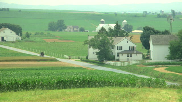 stockvideo's en b-roll-footage met a horse-drawn carriage travels through an amish village. - amish