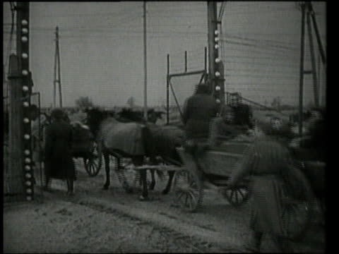 horsedrawn carriages carrying people out the gates of auschwitz / oswiecim germany - befreiung stock-videos und b-roll-filmmaterial