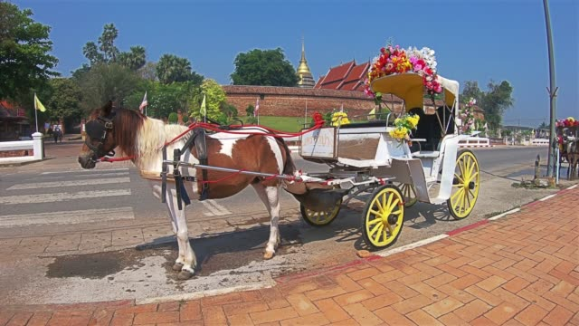 horse-drawn carriages in lampang, thailand - cart stock videos & royalty-free footage