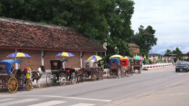 zo:horse-drawn carriages in lampang, thailand - horse cart stock videos and b-roll footage