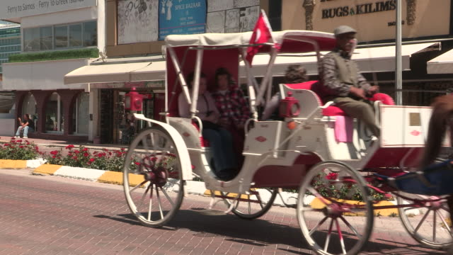 horse-drawn carriages, kusadasi, turkey - arbeitstier stock-videos und b-roll-filmmaterial