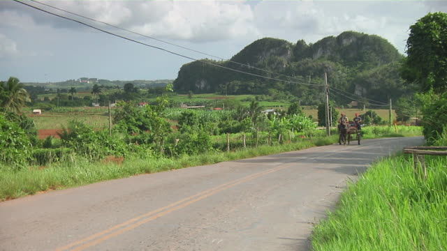 ms horse-drawn cart passing with caves in background / vinales, pinar del rio, cuba - horsedrawn stock videos & royalty-free footage