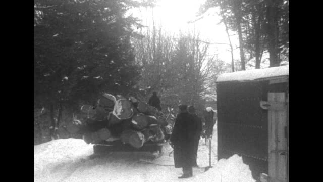 horsedrawn sleigh carrying logs comes down path through woods snow on ground / two shots of sleigh going past men standing next to shed / two men... - 働く動物点の映像素材/bロール