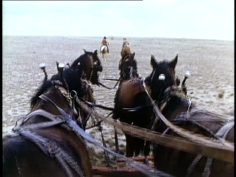 1849 reenactment ms pov horse-drawn wagon, usa, audio - horse cart stock videos and b-roll footage