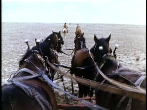 1849 reenactment ms pov horse-drawn wagon, usa, audio - gold rush stock videos and b-roll footage