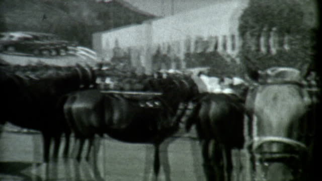 horses 1930's archival film - 1900 stock videos & royalty-free footage