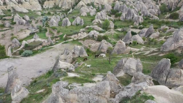 vidéos et rushes de horses and camels used in touristic tours among the hoodoos in the cappadocia region enjoy the tranquility in the pastures during the silent days of... - valley