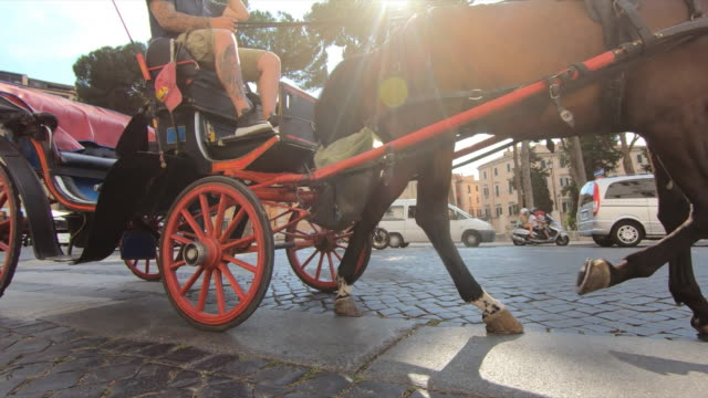 horses and carriages in rome, italy, europe. - slow motion - cocchio video stock e b–roll