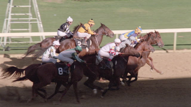 horses and jockeys leave from a starting gate and race around the first corner. - horse racing stock videos & royalty-free footage