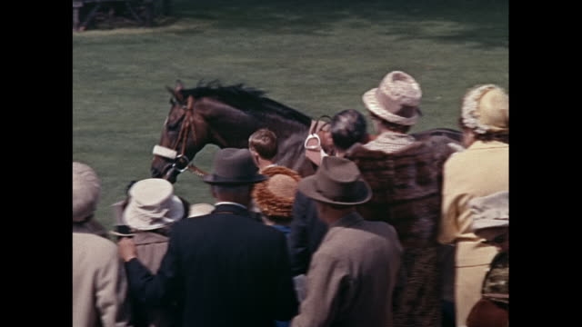 montage horses and jockeys on parade at royal ascot event in berkshire / united kingdom - hüten stock-videos und b-roll-filmmaterial