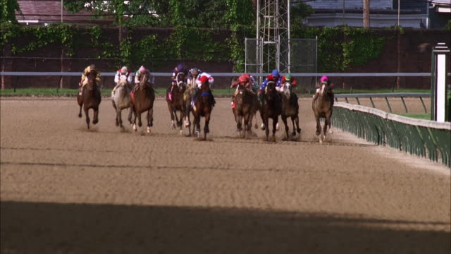 horses and jockeys race down the track at churchill downs. available in hd. - horse racing stock videos & royalty-free footage