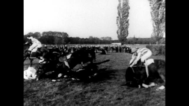 / horses and riders compete in the 78th annual pardubice steeplechase / riders and horses fall / crowd watches with binoculars / horses jump hedge in... - steeplechase stock videos and b-roll footage