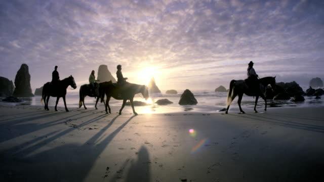 vidéos et rushes de horses and riders on pacific beach at sunset - monter sur un moyen de transport
