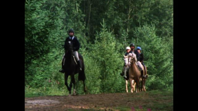 horses and riders trot through woodland; 1986 - all horse riding stock videos & royalty-free footage
