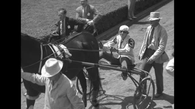 horses and sulkies being led onto racecourse / tiltdown shot mrs frances post #5 moves forward in sulky / tiltdown shot mrs e roland harriman #3 one... - crowing stock videos & royalty-free footage