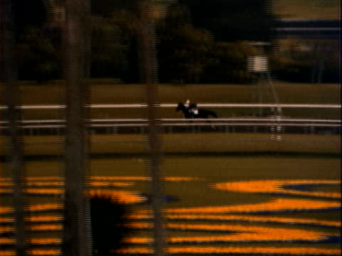 MONTAGE Horses and their jockey riders trotting and racing around track / California, United States