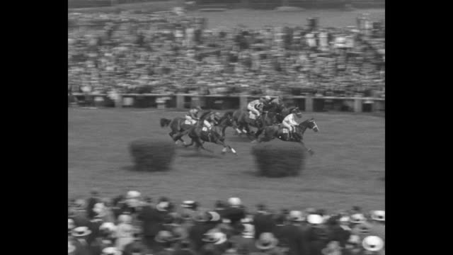 horses approach starting line for grand steeple-chase de paris horse race in auteuil, france; spectators look on; starting line raises, horses move... - other stock videos & royalty-free footage