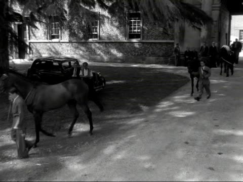 horses are lead from the stables at goodwood race course. - zaum stock-videos und b-roll-filmmaterial
