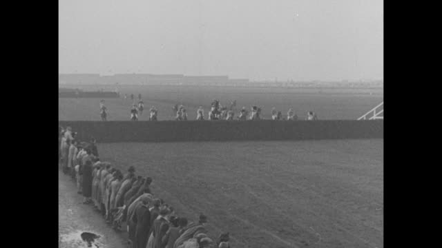 horses at the starting line and the race begins / vs race spectators in foreground / one jockey down at the first jump two at second none at the... - steeplechase stock videos and b-roll footage