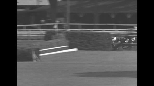 horses break out of starting gate and long pan of spinaway stakes race at saratoga race course / finish line #7 wins / winning horse and jockey... - eastern usa stock videos and b-roll footage