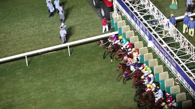 vídeos de stock, filmes e b-roll de horses cross the finish line during a race at the hong kong jockey club's happy valley racecourse in hong kong china on thursday oct 22 spectators... - ilha de hong kong