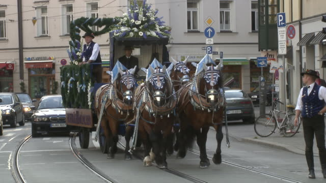 vídeos de stock e filmes b-roll de horses drawn carriage through the streets of munich - animal de trabalho