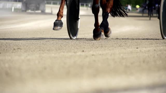 HD SUPER SLOW MO: Horse's Hoofs On A Racetrack