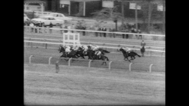 stockvideo's en b-roll-footage met horses line up at start at laurel park for dc international / race begins and number 8 takes the lead / near end fort marcy leads / fort marcy... - getal 8