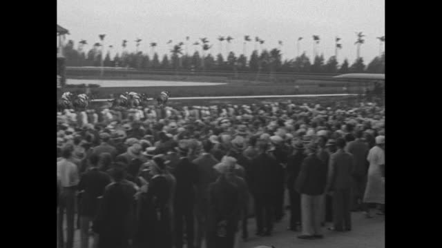 horses move away as race begins at hialeah park race track / fans at ground level look on as horses pass / tiltdown shot horses kick up dust as they... - hialeah stock videos & royalty-free footage