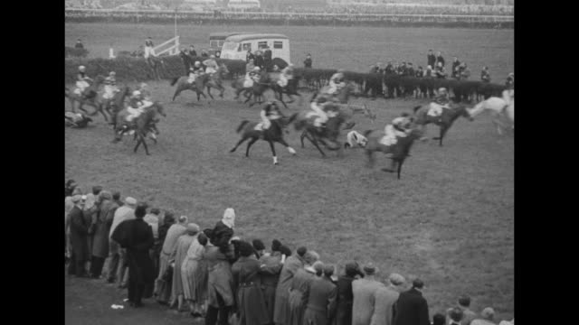 horses over jump some fall as they run in grand national horse race / shot of huge crowd / crowd mills around multisided sign listing race entrants /... - hurdling horse racing stock videos and b-roll footage
