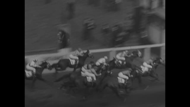 ws horses parade to post at long branch racetrack in toronto for the orpen cup and saucer handicap / horses parade past scoreboard / crowd in stands... - saucer stock videos & royalty-free footage