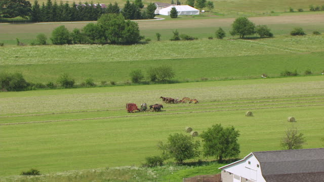 ws aerial pov horses ploughing field / elkhart county, indiana, united states - medium group of animals stock videos & royalty-free footage