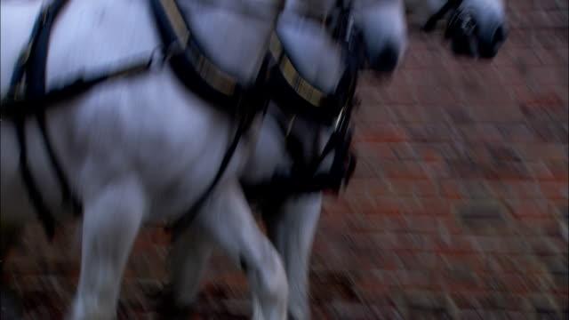 vídeos y material grabado en eventos de stock de horses pull a buggy past pedestrians on a busy street. - carruaje