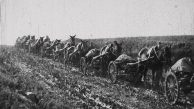 stockvideo's en b-roll-footage met horses pull equipment through mud / france - 1917
