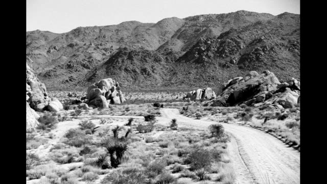 vídeos de stock, filmes e b-roll de horses pull stagecoach on desert dirt road in far background, approach near camera and pass on right. stagecoach racing through the desert on january... - animal de trabalho