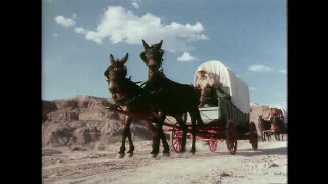 las horses pulling covered wagons in arid texas desert; 1979 - 外乗点の映像素材/bロール