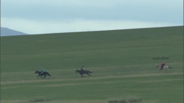 Horses race across grass at Naadam Horse Festival,