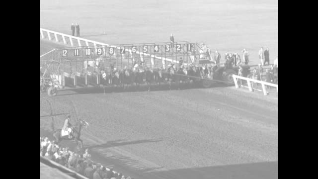 horses race at long branch race track / vs crowd in attendance / horses surge out of starting gate as the cup and saucer stakes race begins / crowd /... - saucer stock videos and b-roll footage