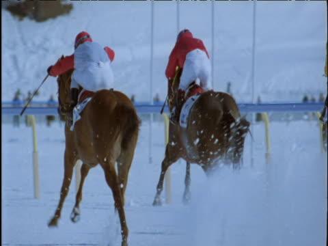 vídeos de stock, filmes e b-roll de horses race away down snow track st moritz - montar um animal