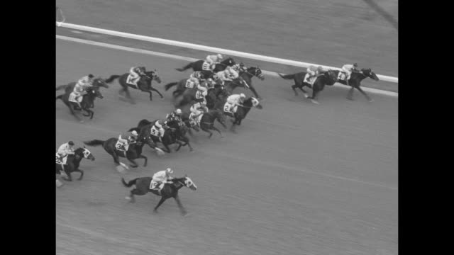 horses race down home stretch and cross finish line during race at garden state park racetrack / horses parade onto track / overhead view of crowd in... - horse blanket stock videos & royalty-free footage