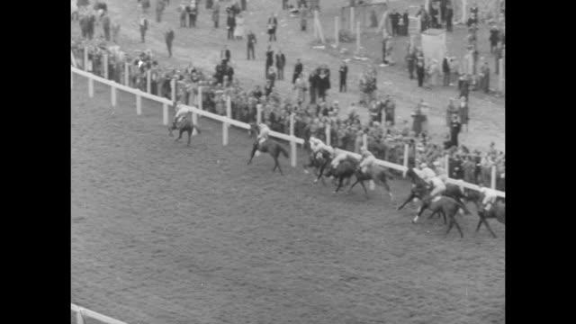 horses race down straightaway at ascot racecourse / horses race down straightaway at the ascot gold cup race / horses race around turn / horses race... - イギリス アスコット競馬場点の映像素材/bロール