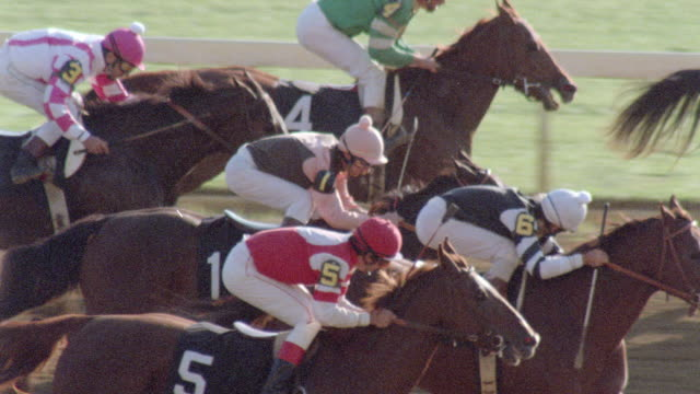 horses race down the homestretch and through the finish line of a racetrack. - horse racing stock videos & royalty-free footage