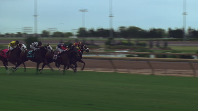 horses race down the track - horse racing stock videos & royalty-free footage