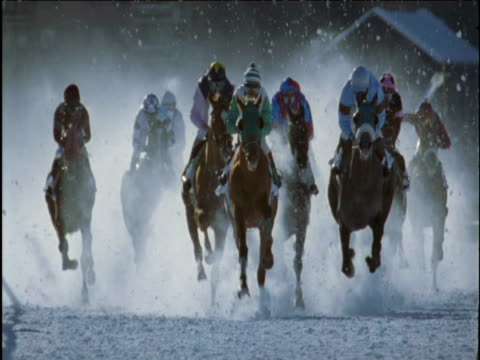horses race on snow track saint moritz - horse racing stock videos & royalty-free footage