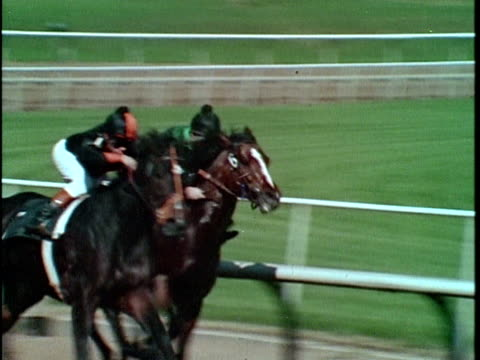 1970 ms pan horses racing on racetrack, los angeles, california, usa, audio - horse racing stock videos and b-roll footage